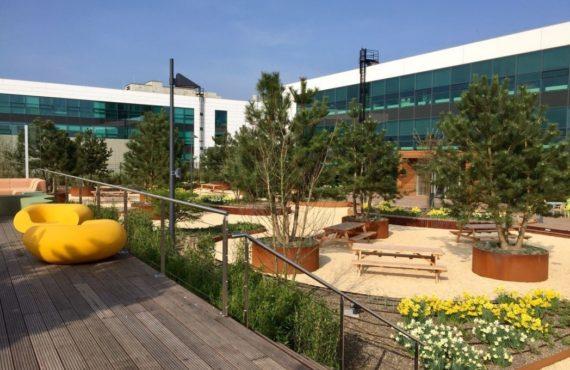 ASML campus